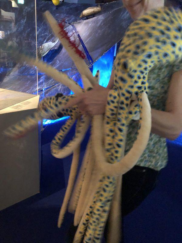 Testing octo's in het Maritiem Museum Rotterdam. Vrijdag komt de eerste kleuterklas testen. Spannend!