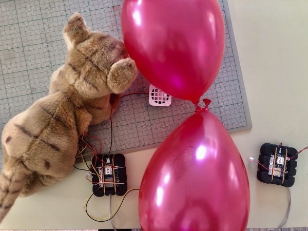Aanvullende tests op onze Tellmie-katten voor Batavialand. Rara wat hebben de ballonnen ermee te maken?  🎈 🎈